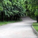 Дорожка ведущая в нижнюю часть Кисловодского парка