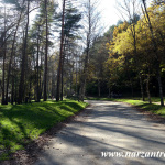 Осенние дорожки. Лечебного-курортный парк. Кисловодск
